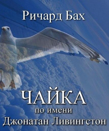 """7 цитат из книги """"Чайка по имени Джонатан Ливингстон"""" Ричарда Баха"""
